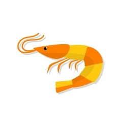 Shrimp flat isolated vector image vector image