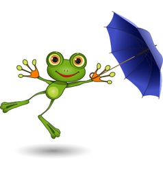 Frog with Umbrella vector image