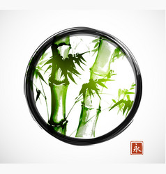Bamboo in black enso zen circle on white vector