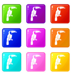 Brazilian toucan icons 9 set vector