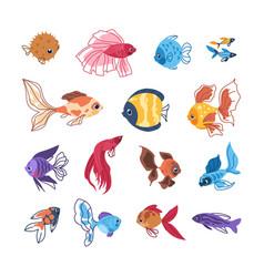 Cartoon fish colorful sea animals hand drawn vector