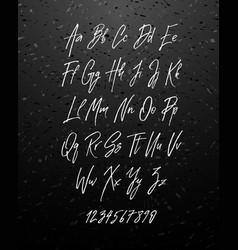 handwritten brush style modern cursive font vector image