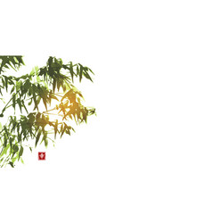 Ink wash painting bamboo on white background vector
