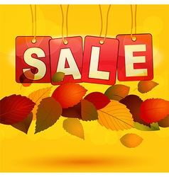 Sale tags with autumn leafs vector image