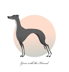 Standing greyhound stylized image dog vector