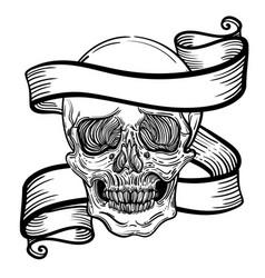 with a human skull and ribbon vector image