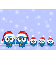 Cute christmas birds vector image