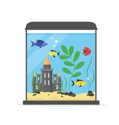 Glass Aquarium for Interior Home vector image vector image