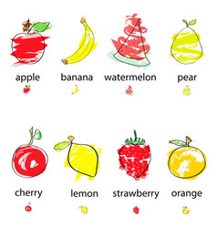 hand drawn artistic fruits vector image vector image
