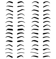 eyebrows tattoo design vector image vector image