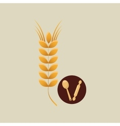 bakery wheat icon vector image