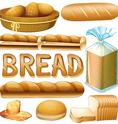 Bread in various kinds vector