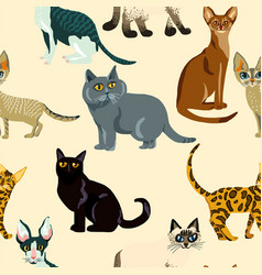 Cartoon cats seamless pattern bree vector