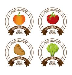 colorful logos set of fresh and healthy organic vector image