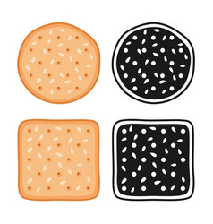 crackers cookies with seeds vector image