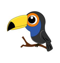 cute cartoon toucan isolated vector image