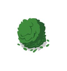 Green bush isolated icon vector
