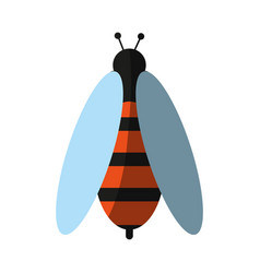 Insect icon image vector