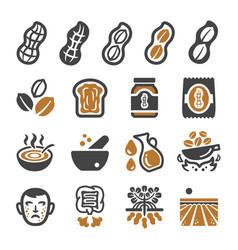 Peanut icon set vector
