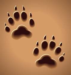 Prints wild animal traces on the ground vector