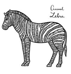 Stylized Zebra zentangle isolated on white vector image