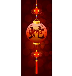 hieroglyph of snake on the chinese flashlight vector image vector image