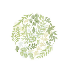 circle green floral hand drawn composition vector image