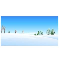 Fir trees snow landscape vector