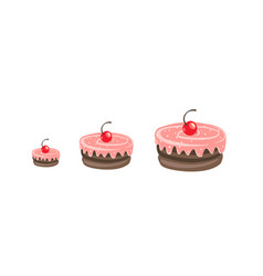 cakes sizes cake dessert with a cherry pastry vector image
