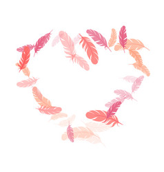 falling feather elements soft design vector image