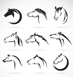 Group of horse head design vector image