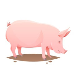 Pink farm pig vector image