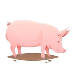 Pink farm pig vector