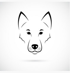wolf muzzle on white background line art vector image