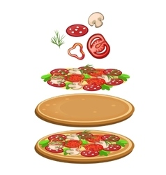 Ingredients for cooking pizza icon food vector image