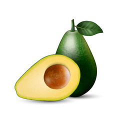 3d realistic whole and half avocado vector
