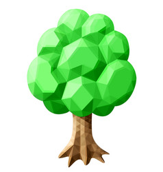 beautiful low poly art with green oak tree vector image