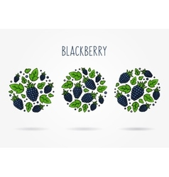 Blackberry round labels creative concept vector image