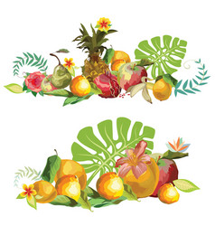 fruits composition2 vector image