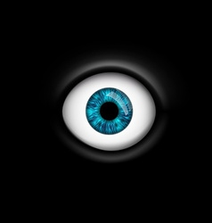 human eye isolated on black background vector image