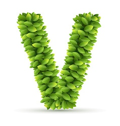 Letter U alphabet of green leaves vector image