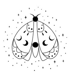 Spiritual butterfly with mystery moon magic vector