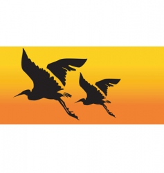 two cranes flying vector image