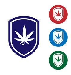 blue shield and marijuana or cannabis leaf icon vector image