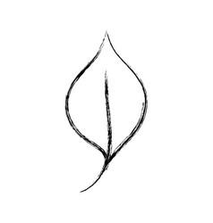 Figure nice organic leaf plant vector