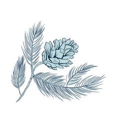 Fir cone pine tree branch spruce line art vector