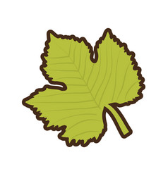 Grape leave natural icon vector