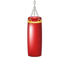 punching bag for boxing vector image