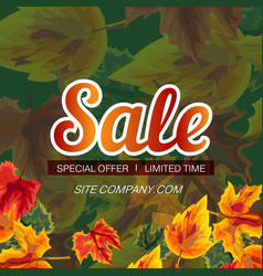 web poster with promotion of seasonal sale vector image