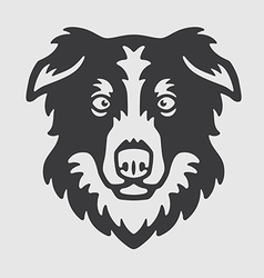 Border Collie Head Logo Mascot Emblem vector